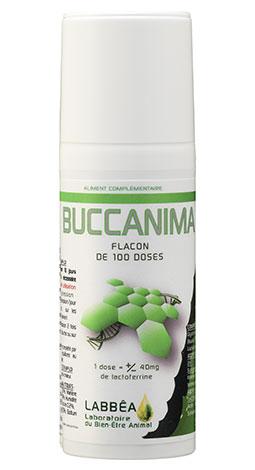 buccanima